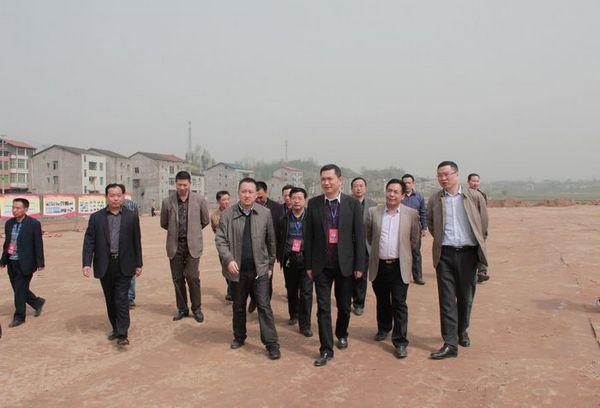 渠县三板镇风景图片