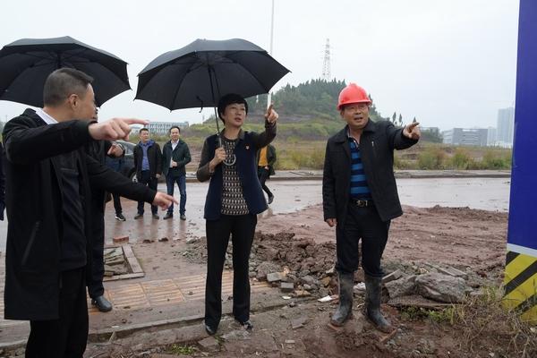 苟小莉督导工业园区在建企业建设进度