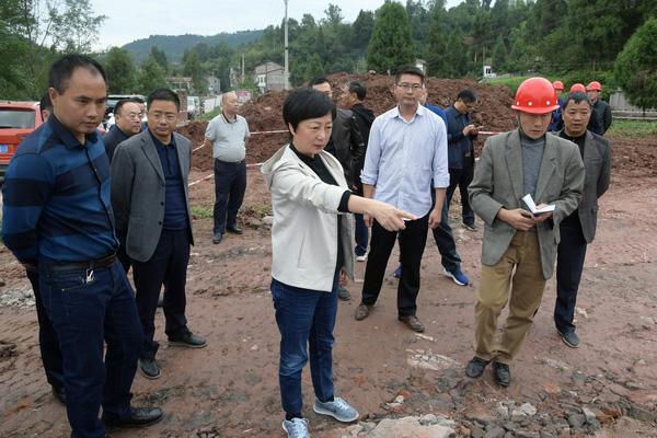 苟小莉调研环保工作时要求:高质量、高标准、高效率推进城乡污水处理项目建设工作