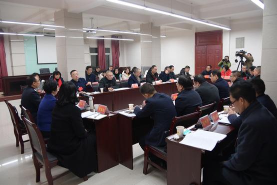 苟小莉参加代表一团、九团审议
