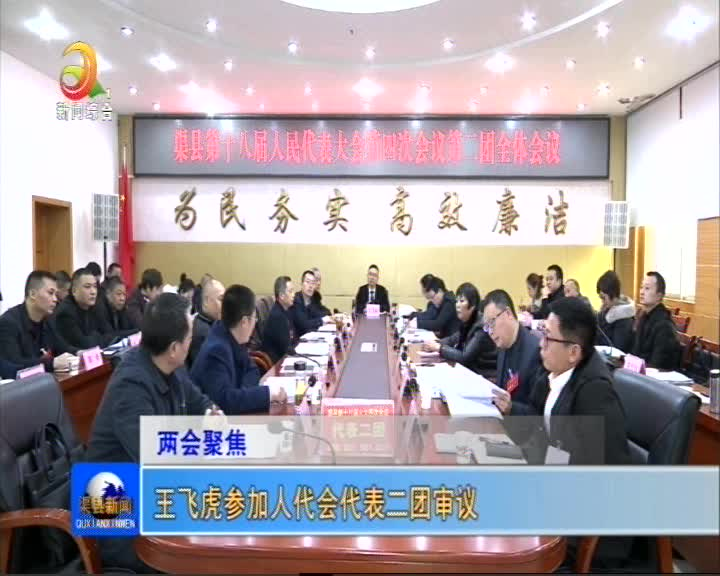 王飞虎参加人代会代表二团审议