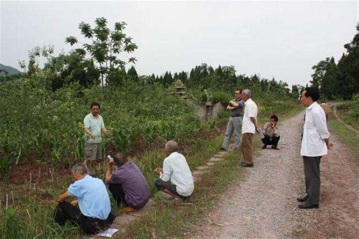 何建為果農現場講解蘋果整形修剪和病蟲害防治技術