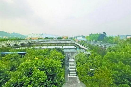 走进jbo竞博下载苹果版西城污水处理有限公司